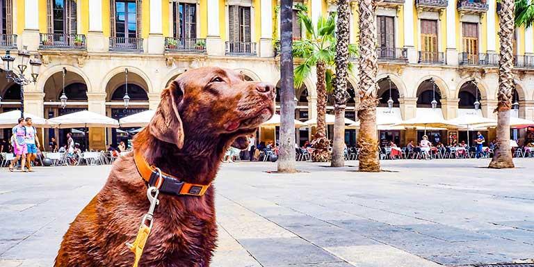Costa Brava und Barcelona