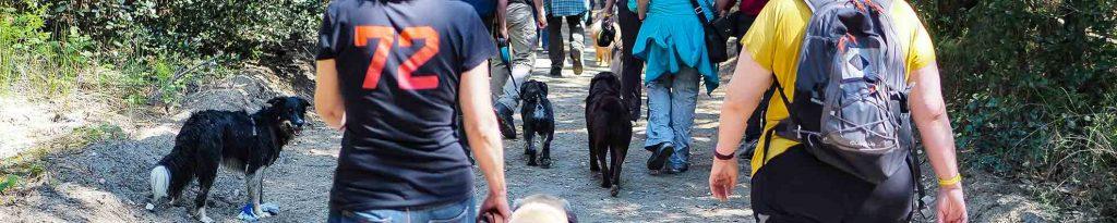 Adria Wandern mit Hund